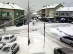 Бојник под снегом